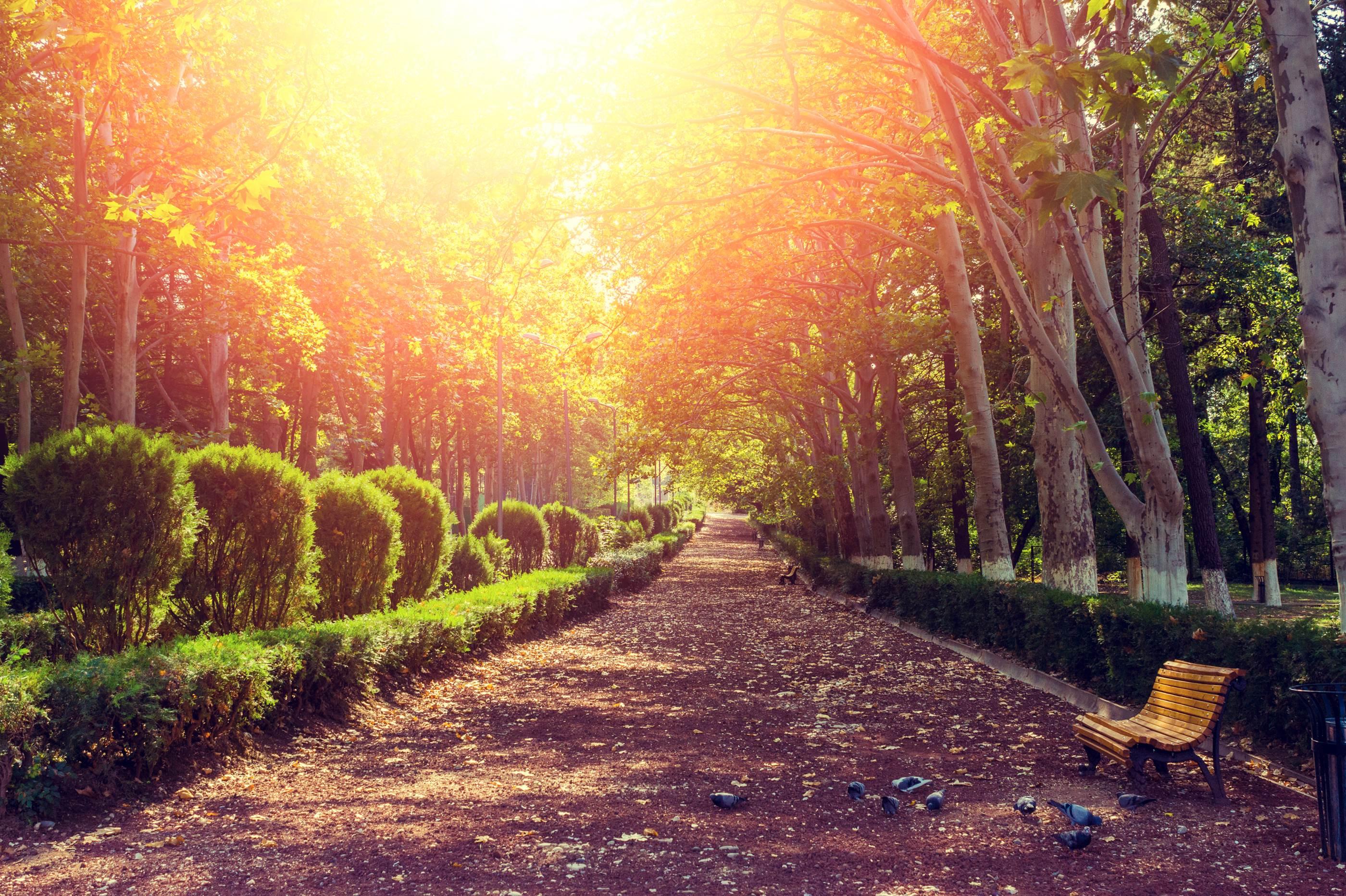 从化云龙山生态园一日游
