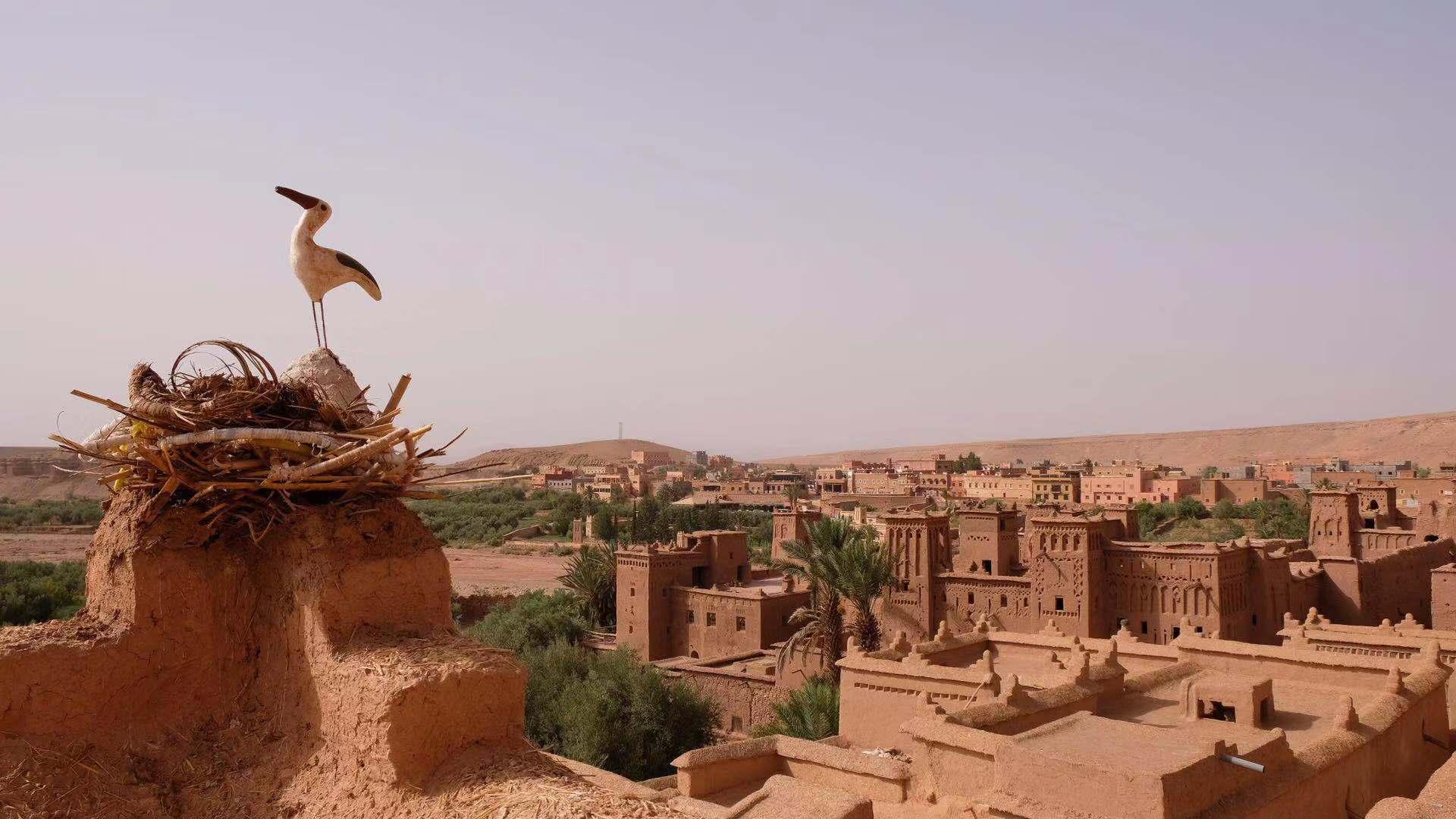摩洛哥深度全景美食三飞14天游